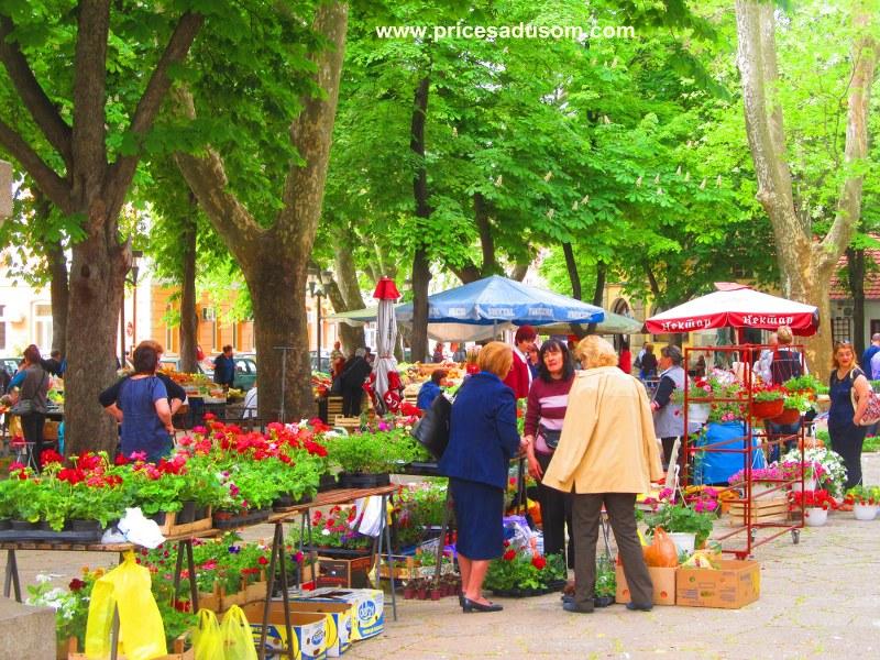 Trebinje i Mostar 16 062_800x600