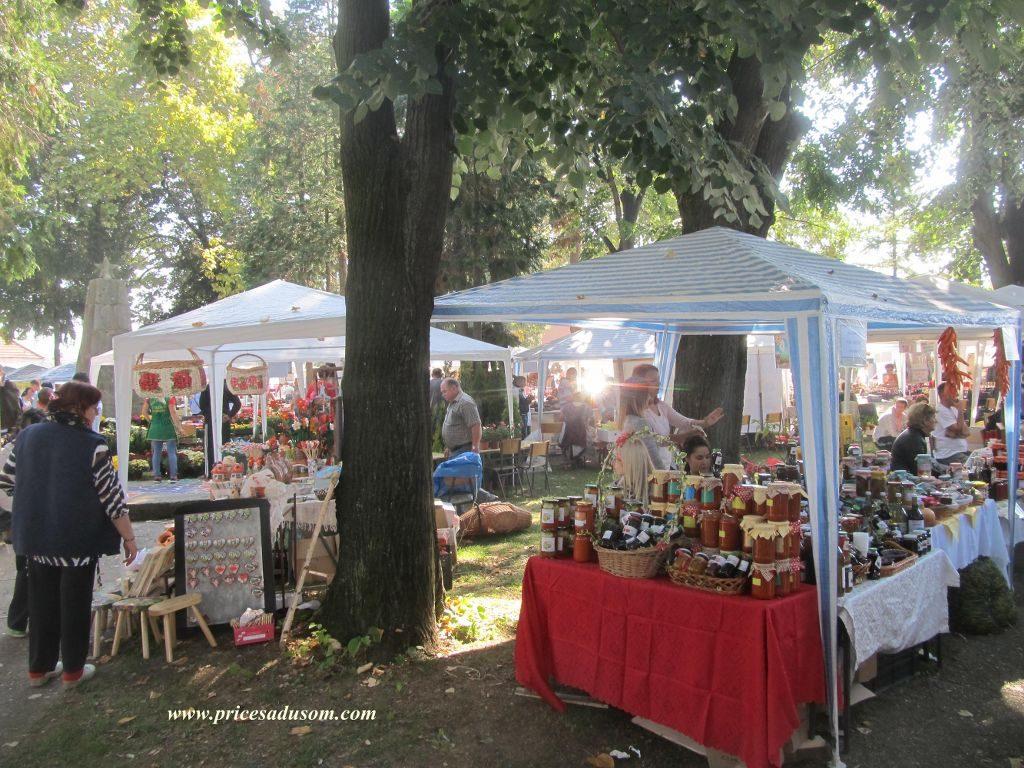 festival-zimnice-koceljeva-080_1024x768