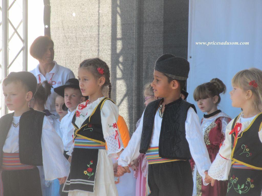 festival-zimnice-koceljeva-095_1024x768