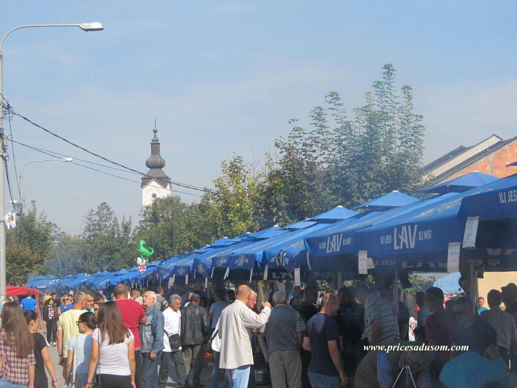 festival-zimnice-koceljeva-228_1024x768
