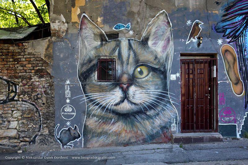 beograd-grafiti-img_1732-edit_800x533