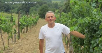Zoran Ilic Lipovica 1_1024x768