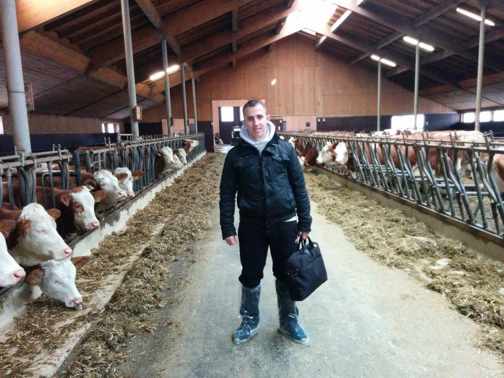 Na farmi u Minhenu_1024x768